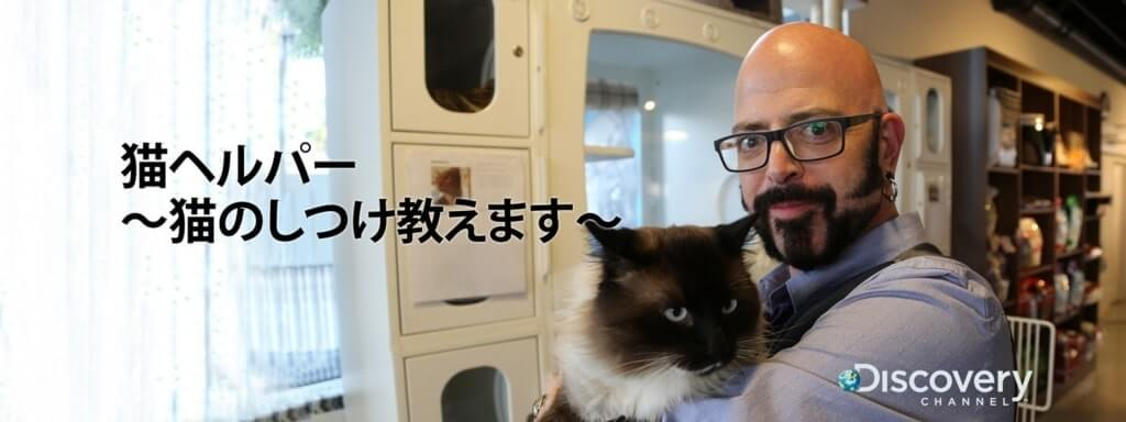 アニマルプラネット「猫ヘルパー猫のしつけ教えます」問題猫を救え!内容と感想